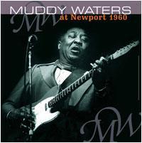 WATERS MUDDY