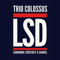 Lindborg Sjöstedt & Daniel