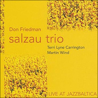 FRIEDMAN DON SALZAU TRIO